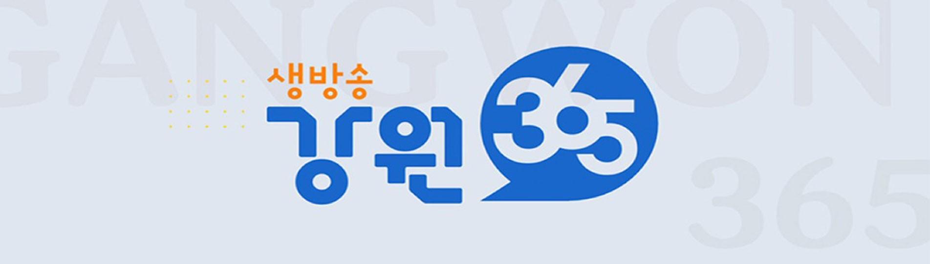 강원365